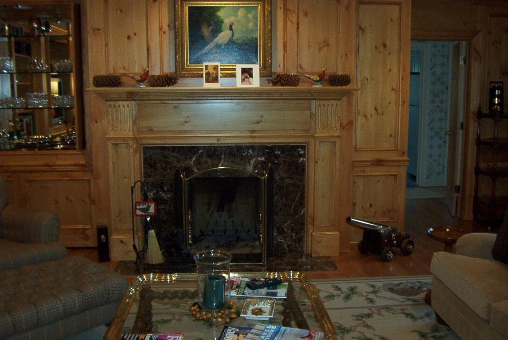 1070 elmtree fireplace